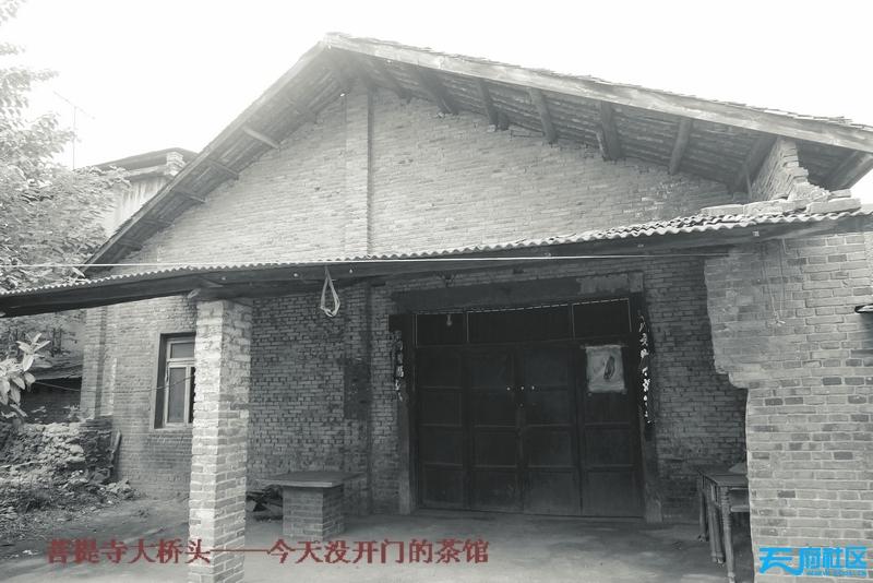 P1310835.JPG