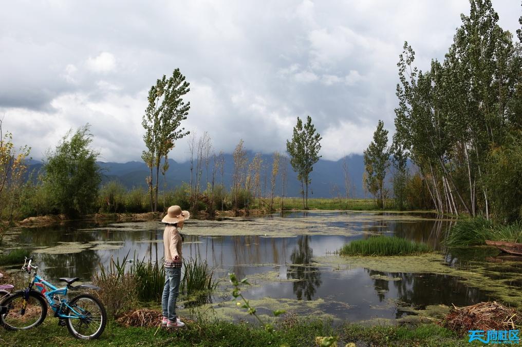 少女与湖.jpg