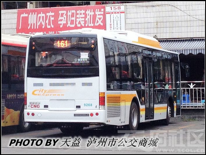 IMG_2595_副本.jpg