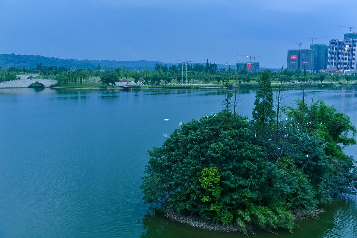 【眉山飞常美】眉山湿地公园夜色