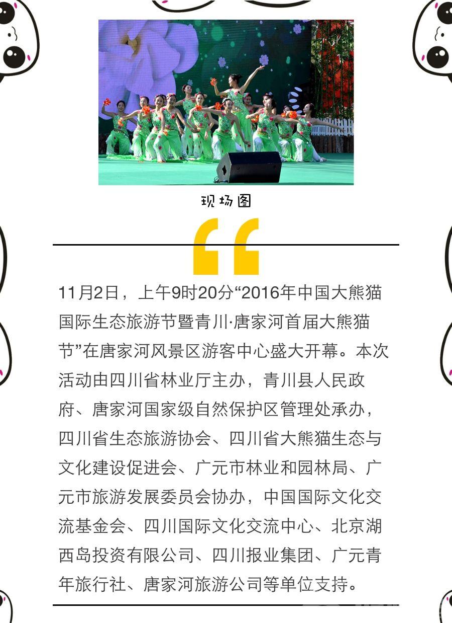 唐家河大熊猫节开幕式1.jpg