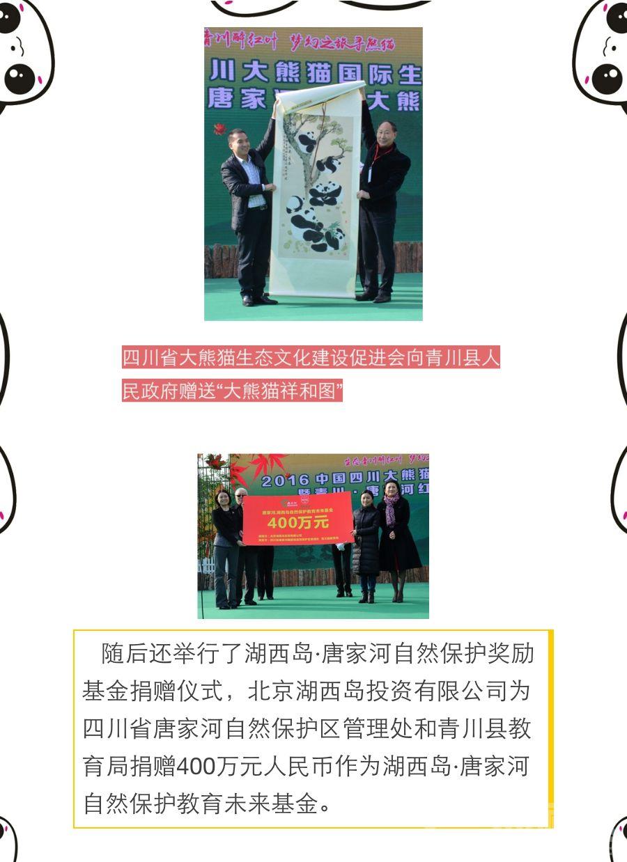 唐家河大熊猫节开幕式4.jpg