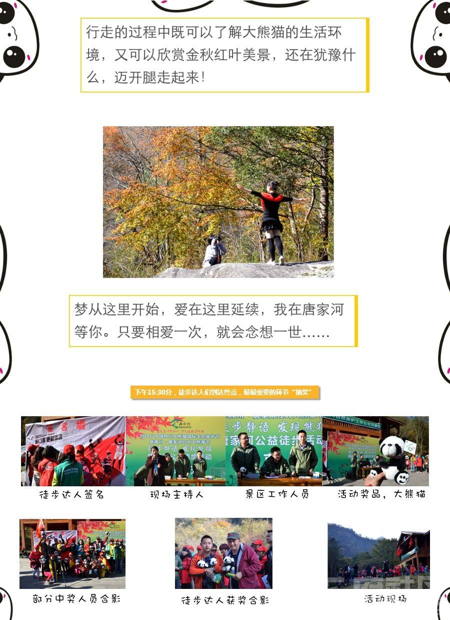 唐家河大熊猫节开幕式7.jpg