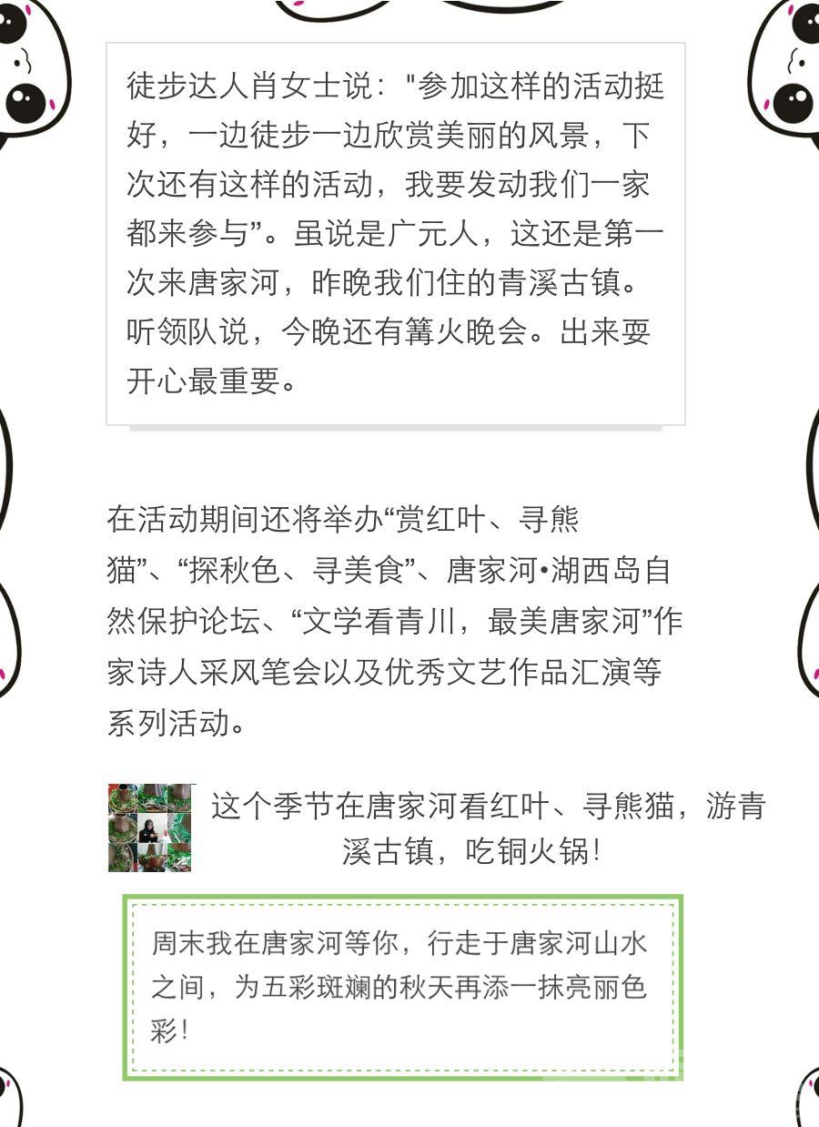 唐家河大熊猫节开幕式8.jpg