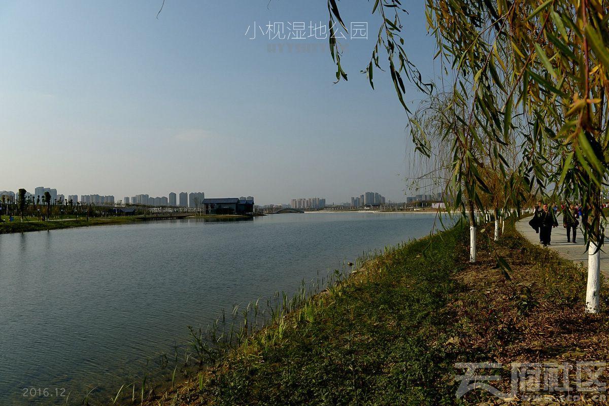 小枧湿地12.jpg