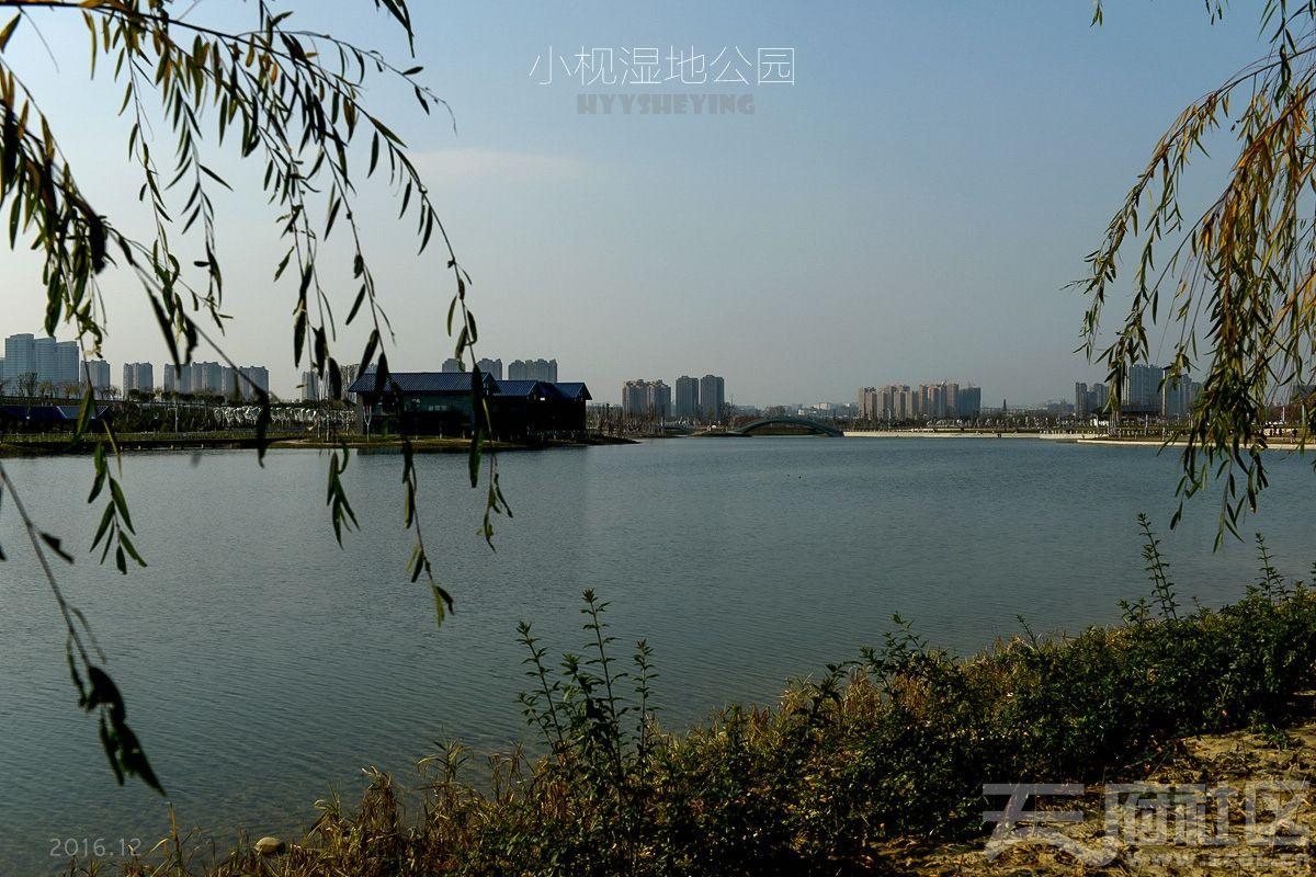 小枧湿地11.jpg