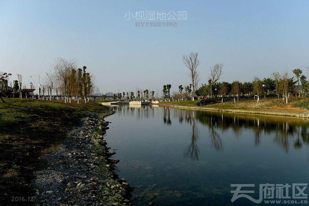 小枧湿地20.jpg