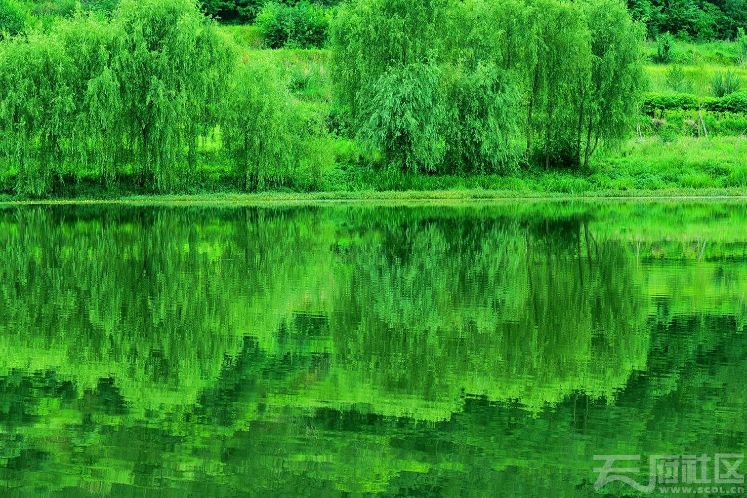 构溪河小景2.jpg