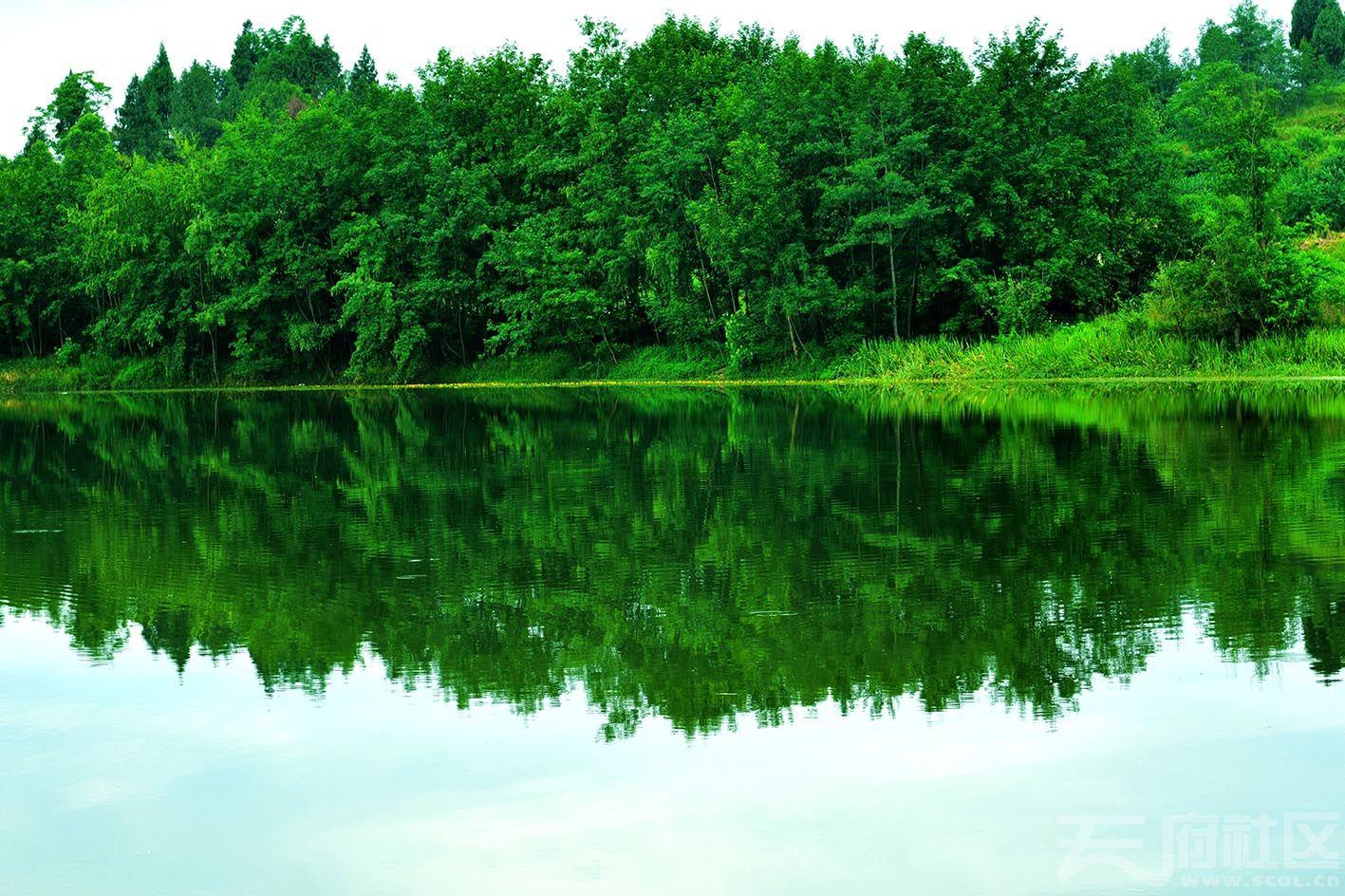 构溪河小景3.jpg