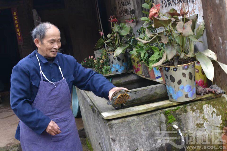 大院内有石水缸接山泉活水,池中养着4只乌龟和金鱼。psb.jpg