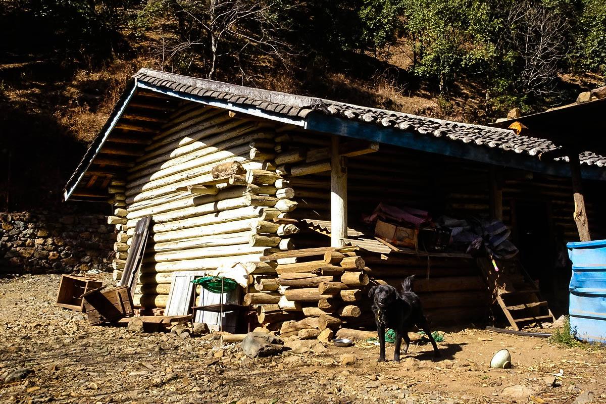 【新年游记】木屋的故事