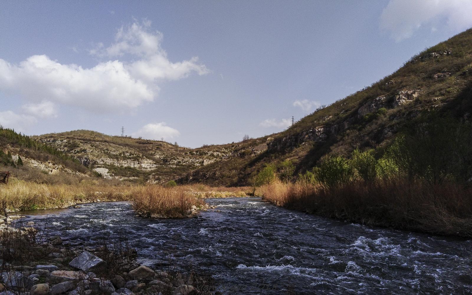 春到沁河谷-3.jpg