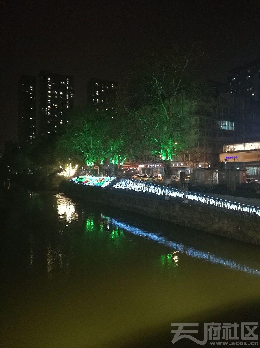 2019年1月5日建设路沙河河畔夜景07.jpg
