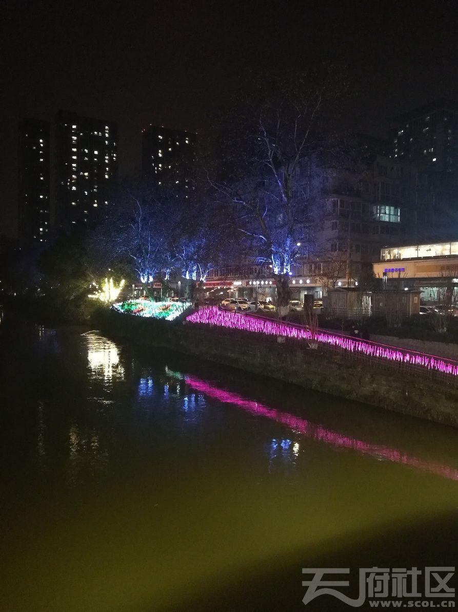 2019年1月5日建设路沙河河畔夜景08.jpg
