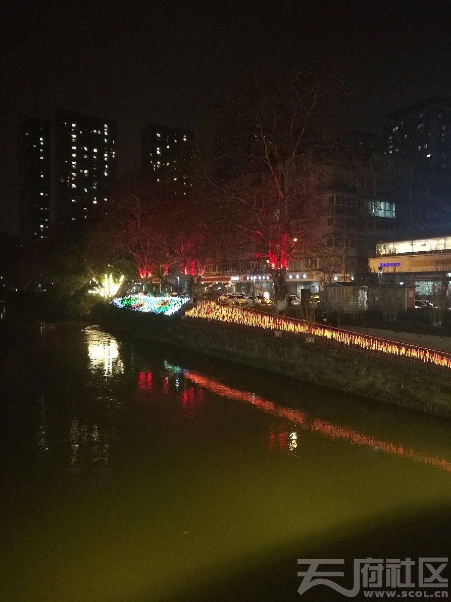 2019年1月5日建设路沙河河畔夜景09.jpg