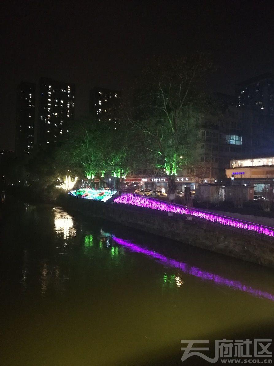 2019年1月5日建设路沙河河畔夜景03.jpg