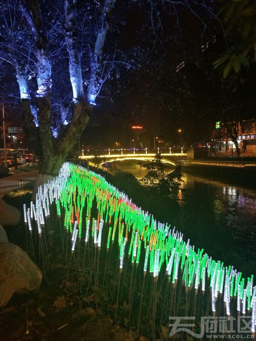 2019年1月5日建设路沙河河畔夜景16.jpg