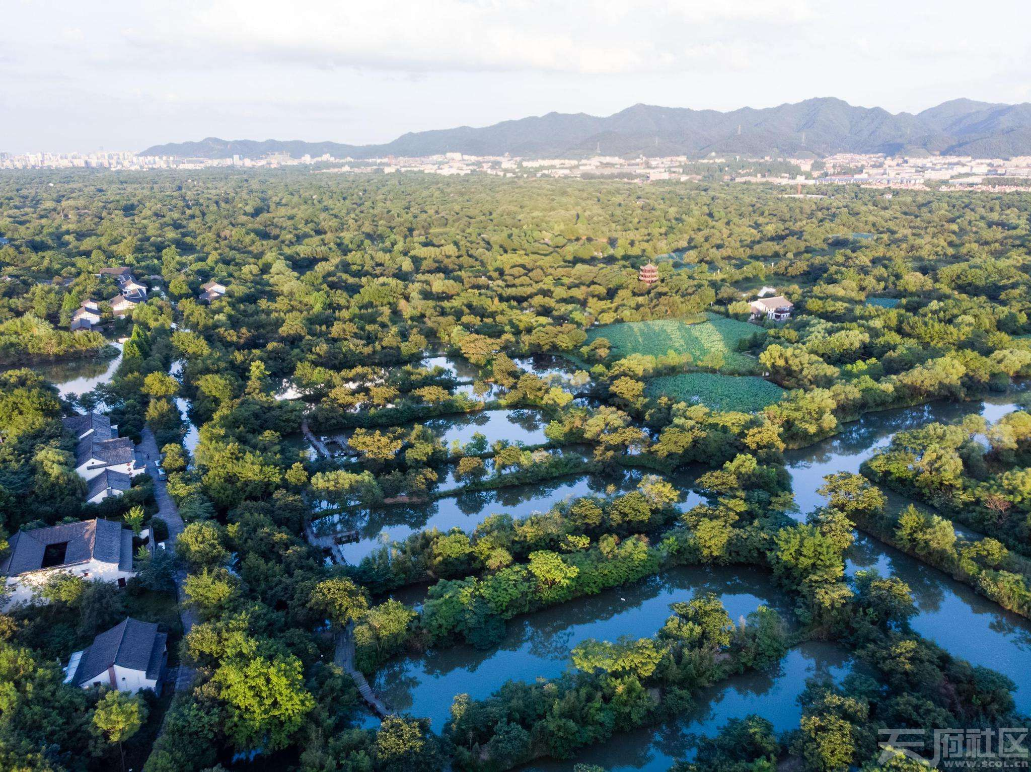 西溪湿地1.jpg