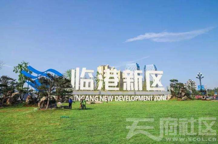 临港 - 新区.png