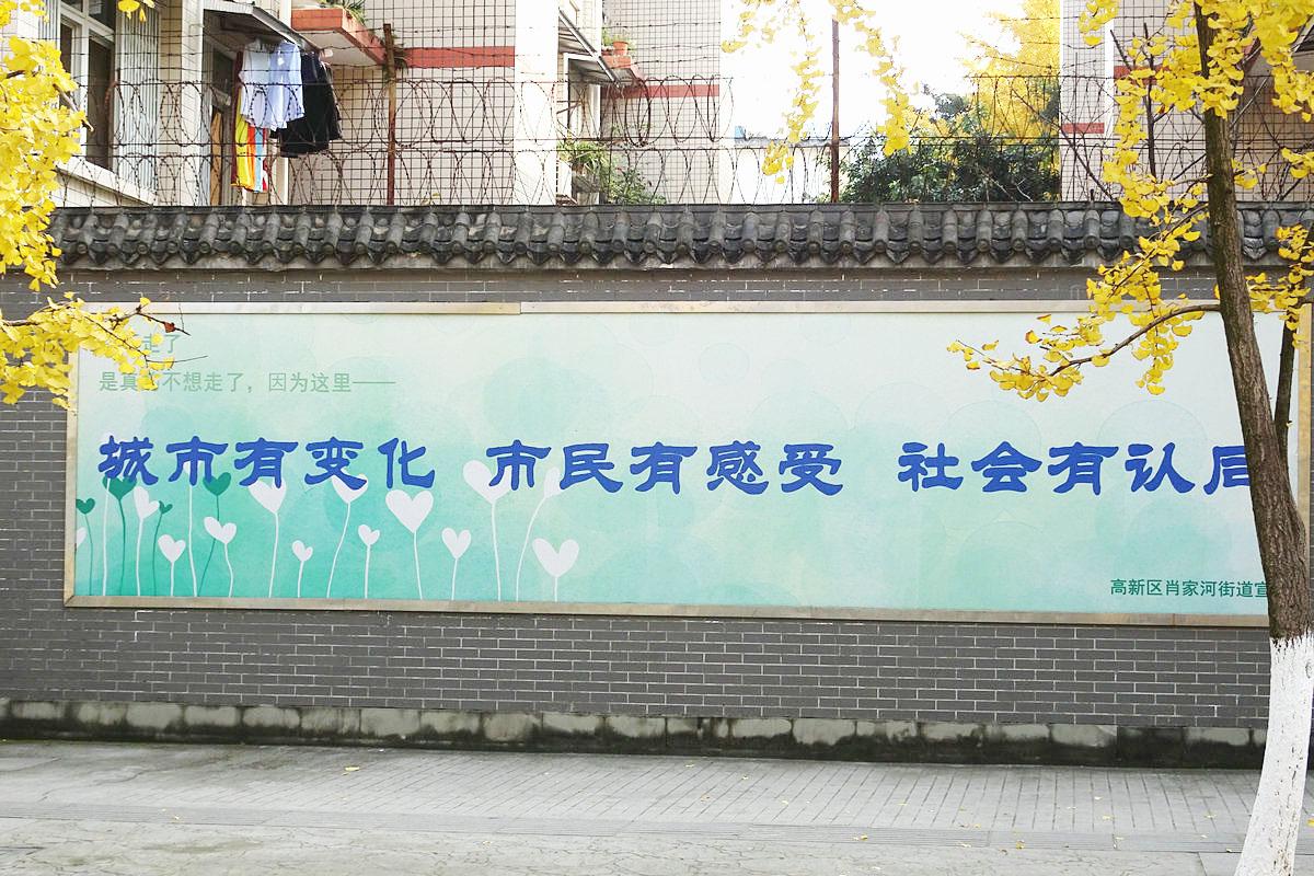 【己亥年银杏季】兴蓉街道的点点滴滴