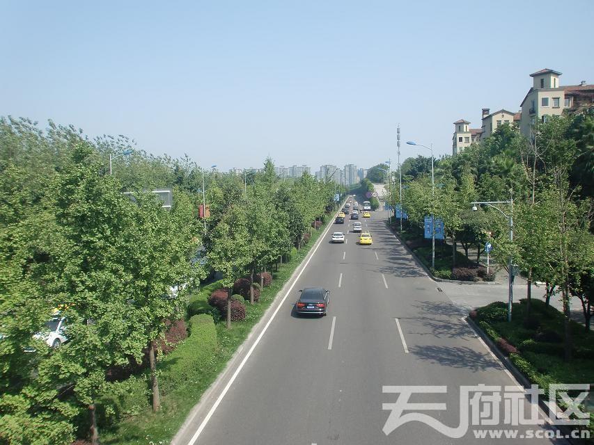 重庆金开大道2.jpg