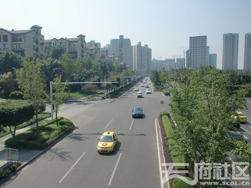 重庆金开大道4.jpg
