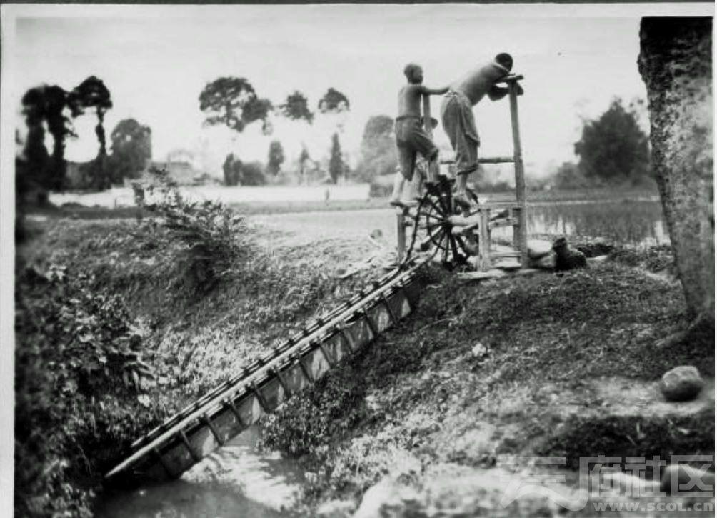 25 乐山 脚蹬水车 1915-1925.JPG