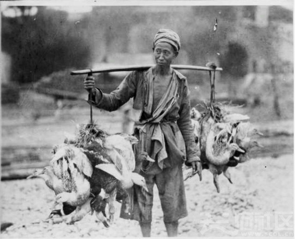 28 乐山 男子肩上扛着一担活鸭子走向市场 1915-1925.JPG