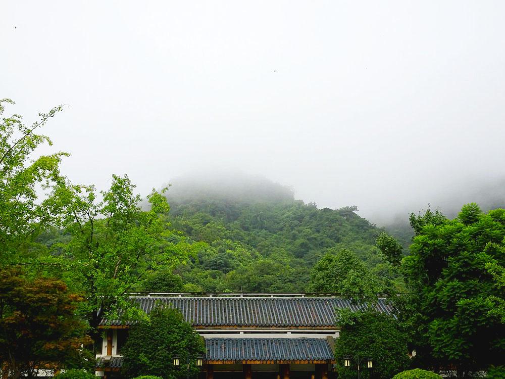 【八月行】云雾缭绕青城山