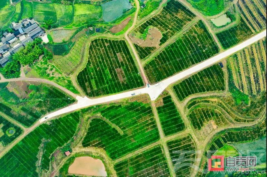 微信图片_20201017200219.jpg