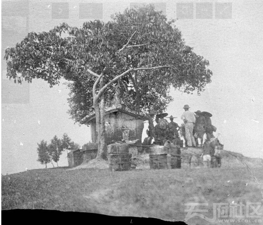 7  遂宁 树下休息 1917.JPG