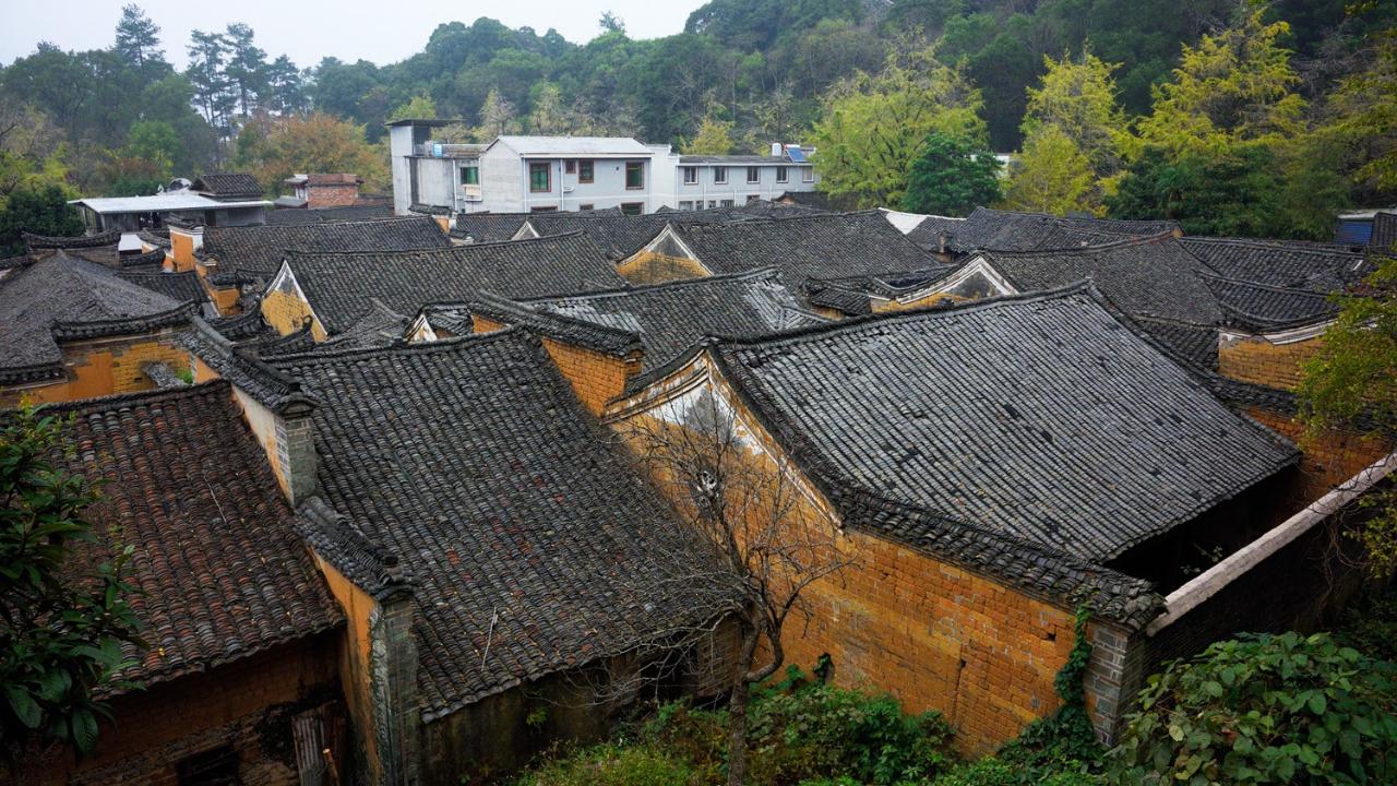 【组图】广西:银杏季中的大桐木湾村(5)