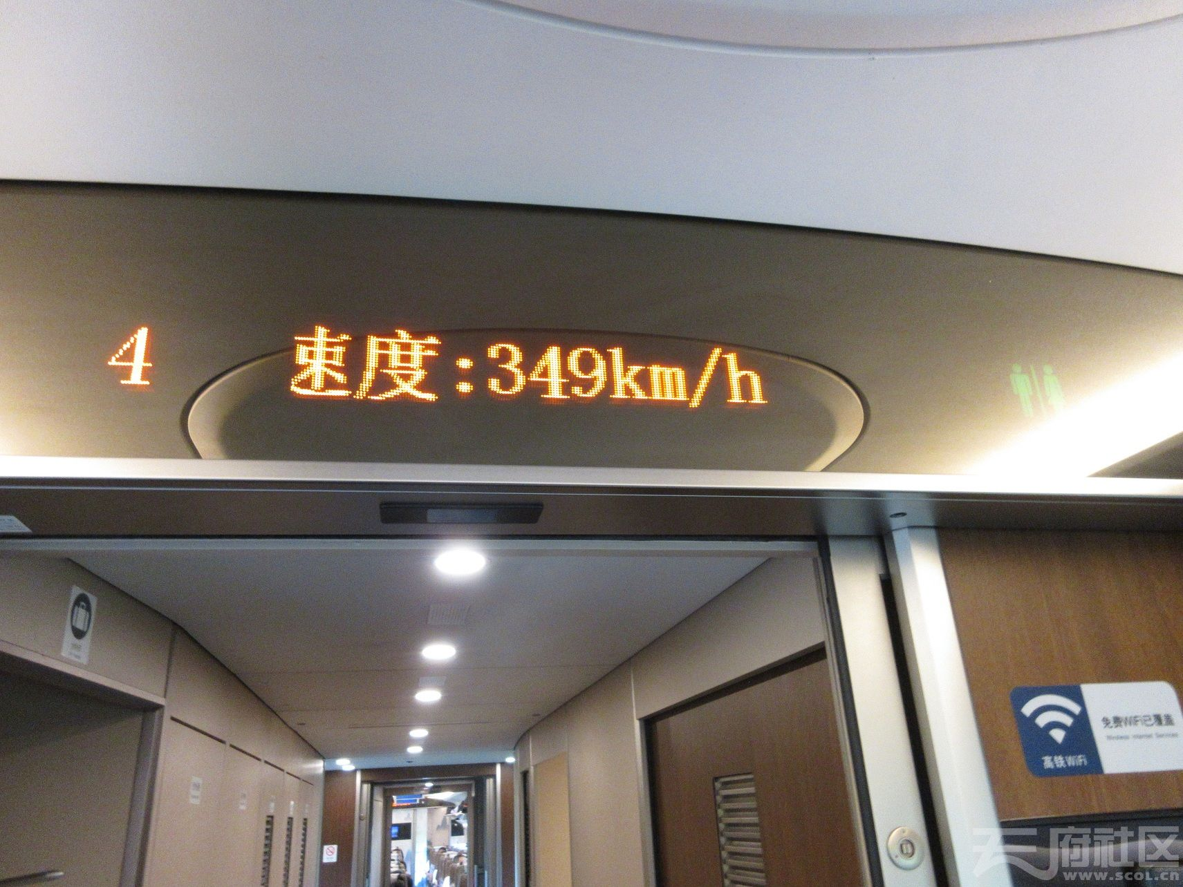 314.jpg
