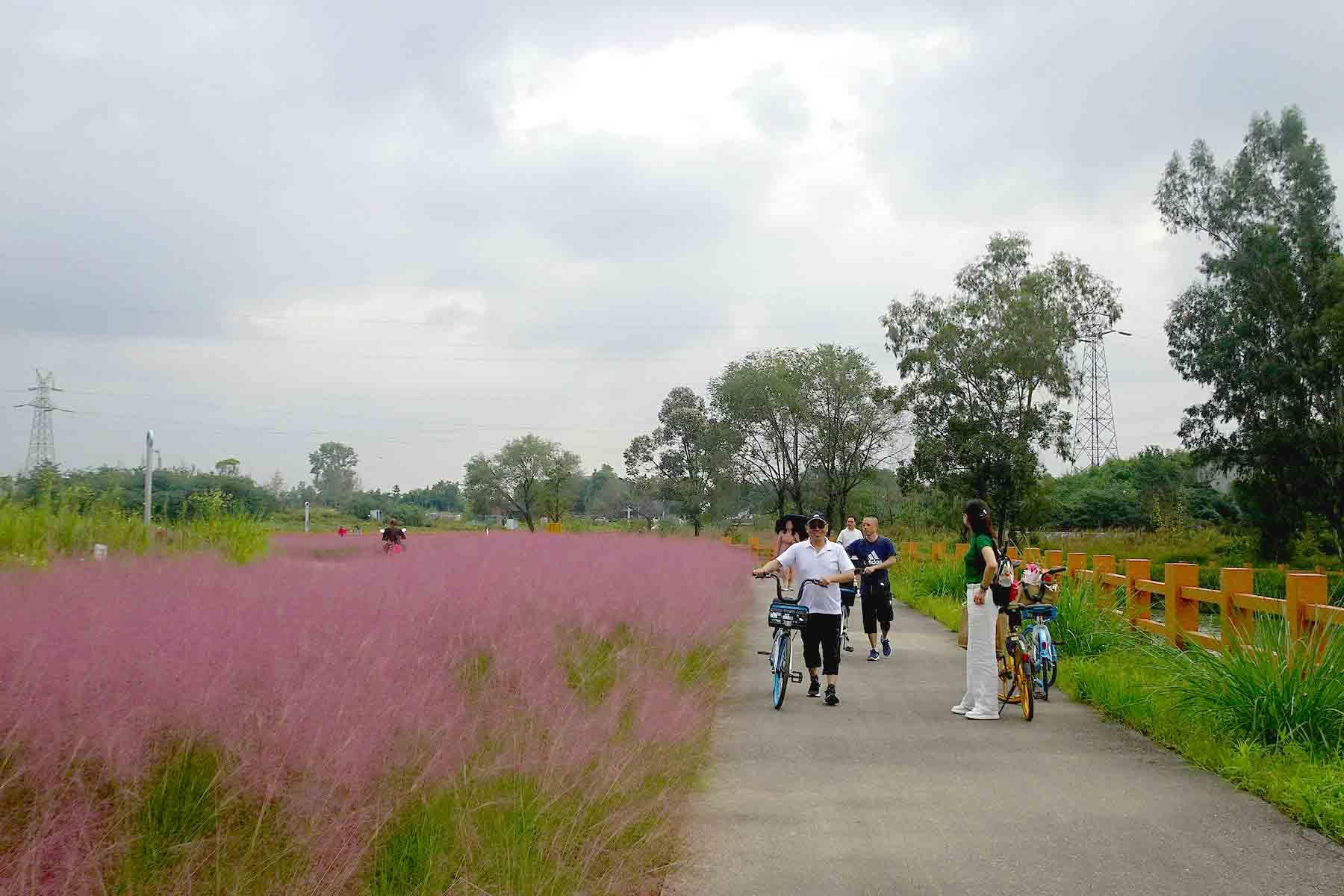 玉石湿地公园掠影