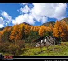 秋色 ●  泥巴沟