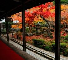 (干货)整理京都10处赏枫名所