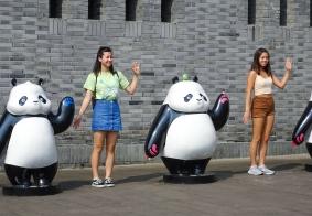 大熊猫人见人爱