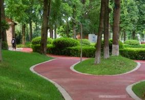 【闲拍】散步随拍(26):城市绿道小照(续)