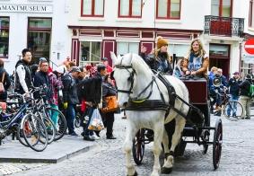#欧洲行#  比利时布鲁日古城的马车