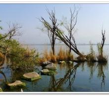 水乡湿地入画来——邛海