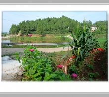 【【 乡 村 诗 意 的 轮 廓 】】………双桥镇黄楝沟农旅特色项目产业园………