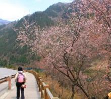 【51最游记】只要有看风景的心,走到哪里都是风景——追寻春天的尾巴,5月九寨之旅