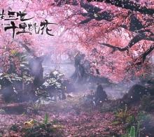 大美仙境在武隆--看《三生三世》所有唯美风景