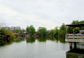 清水河公园