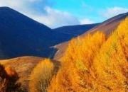 【2012金秋】川内秋天景色汇总,晒出你身边的迷人秋景,送神秘好礼