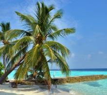 马来西亚那些私藏的冷门纯净海岛(邦咯岛、湿米岛、白沙岛、美人鱼岛)