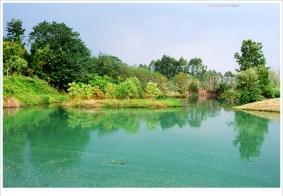 【随拍】新津:白鹤滩湿地公园小照