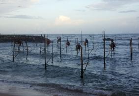 【大千世界】斯里兰卡的高跷渔夫