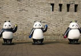 #纳凉# 走进青城山脚下的熊猫乐园