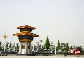 【洛阳行】王城公园看牡丹
